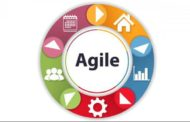 Agile Management Team Roles