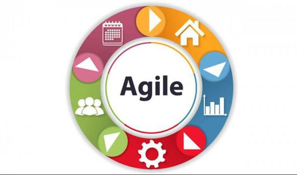 Agile Management Team Roles