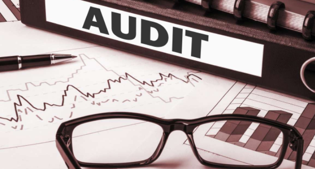 How Auditing Plays an important Role in your Organization