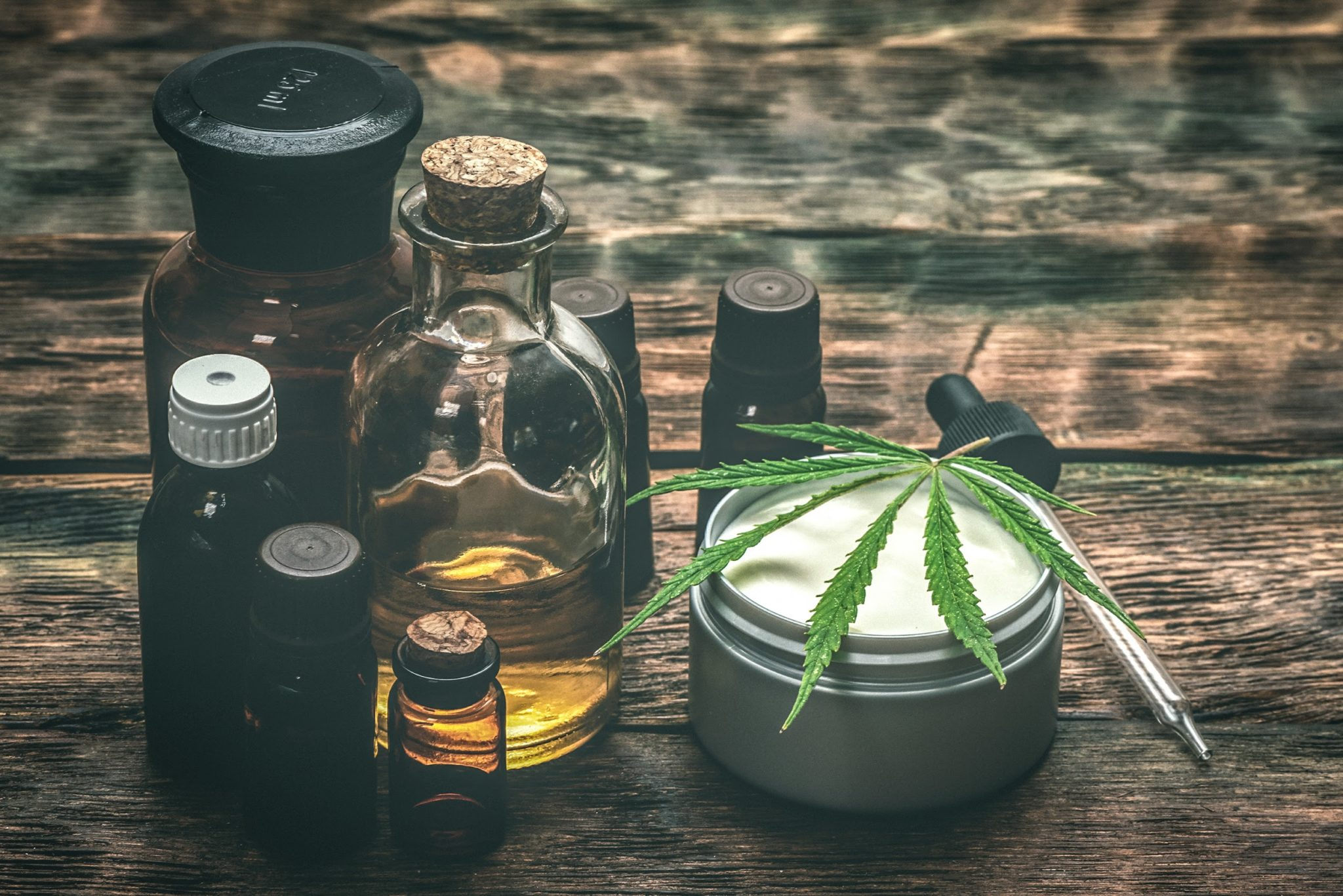 CBD 101: A Guide on How to Become A CBD Distributor